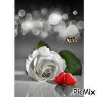 Gif! Picmix Gif, Random Gif, Floral, Flowers, Flower