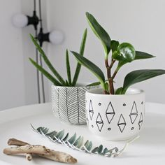 Turn 1 $ thrift store finds into unique and chic mini planters (in Norwegian and English)