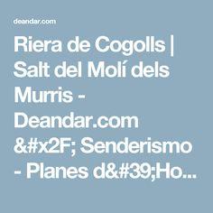 Riera de Cogolls | Salt del Molí dels Murris - Deandar.com / Senderismo - Planes d'Hostoles