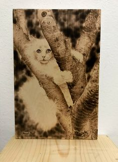 Handmade Pyrography Painting of a white cat (Painted by Heart Pyr) Pyrography, Pet Birds, Wood Crafts, Cats, Handmade, Painting, Animals, Women, Gatos
