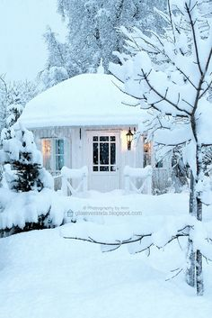 Outdoor Christmas Garden Inspiration ♥ Kerst Tuin Inspiratie Decorations Snow Snowed Sneeuw White Wit Huisje Cabin Tuinhuis #Fonteyn