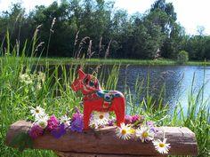 Trevlig sommar med Dalarhast Welcome To Sweden, Blue Garden, Horse Love, Red Poppies, Pink And Green, Summer Time, Scandinavian, Horses, Image