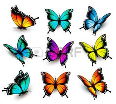 Resultado de imagen para mariposas