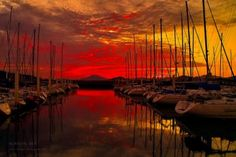 ... red sky at night? A sailor's delight!    Photography by Junya Hasegawa
