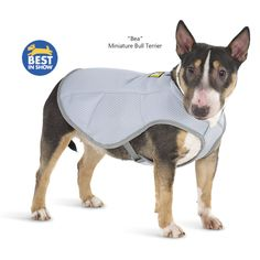 Ultimate Cool Vest - Problem Solvers for Home, Yard, Garden, Auto – Pest and Animal Control