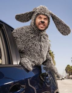 Wilfred. On Netflix. Hysterical, must watch!