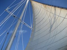 beautifully trimmed sail!