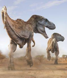 Tyrannosaurus rex : The first specimen (a partial vertebra) was establish by Edward Cope in 1892 and was described as Manospondylus gigas. It was assigned to Tyrannosaurus rex in 1912 by Henry Osborn. Prehistoric Dinosaurs, Prehistoric World, Dinosaur Fossils, Dinosaur Art, Prehistoric Creatures, Preschool Dinosaur, Dinosaur Crafts, Dinosaur Bones, Preschool Crafts