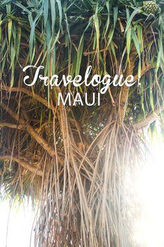 Travelogue: Maui, Hawaii (August 2013) Photo