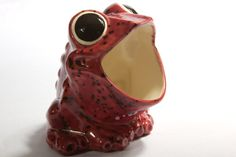 Hey, I found this really awesome Etsy listing at https://www.etsy.com/listing/69993911/vintage-scrubby-holder-ceramic-frog
