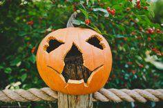 Haunted Pumpkin Garden and Pumpkin Carving at NYBG the New York Botanical Garden halloween