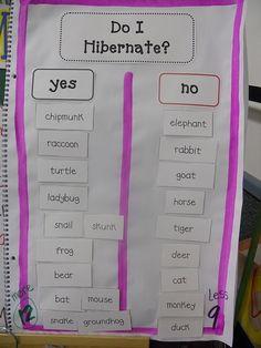 hibernation activities for kindergarten -Google Search