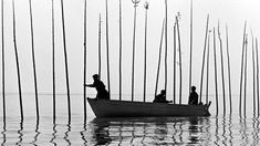 Pour La Suite Du Monde, Michel Brault, Marcel Carrière and Pierre Perrault, 1963 Vancouver Aquarium, Fiction Film, Maybe Someday, Grey Skies, English, Rare Animals, Guys Be Like, Small Island, Documentary Film