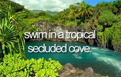 Swim in a tropical secluded cove.