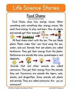 This Reading Comprehension Worksheet - Food Chains is for teaching reading comprehension. Use this reading comprehension story to teach reading comprehension. Reading Comprehension Worksheets, Reading Fluency, Reading Passages, Science Worksheets, Science Lessons, Life Science, Earth Science, Science Experiments, Science Stem