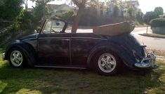 Best Reliable Cars, Happy Birthday Ron, Beetle Convertible, Vw Beetles, Vw Bugs, Bubbles