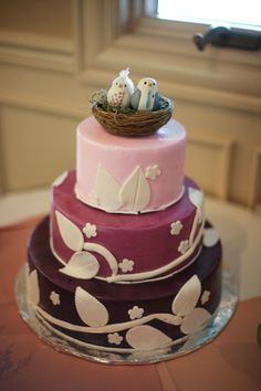 cute birds on the cake