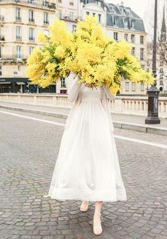 Late For Love - Mimosa Ile St Louis Paris | Carla Coulson Prints