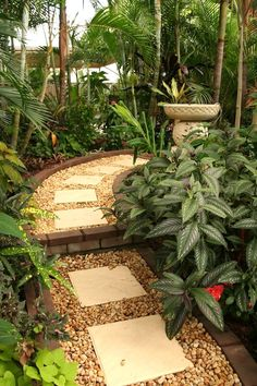 Temperate climate tropical garden | GardenDrum Tropical Breeze design Helen Curran There's nothing so alluring as a path the curves out of sight