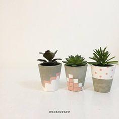 Concrete Planter& A set of 1 2 Coral Concrete Pot& Painted Plant Pots, Terracotta Plant Pots, Painted Flower Pots, Cactus Plante, Pot Plante, Small Potted Plants, Indoor Plant Pots, Indoor Gardening, Concrete Crafts