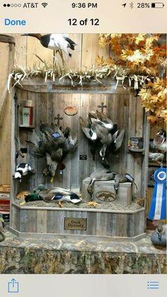 Taxidermy Decor, Taxidermy Display, Bird Taxidermy, Duck Hunting Decor, Hunting Art, Hunting Stuff, Deer Head Decor, Duck Mount, Deer Mounts