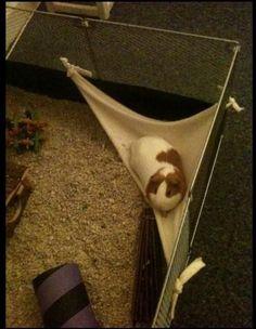 Hammocks Instructions: How to make a Corner Hammock for all little guys! We all LOVE hammocks!
