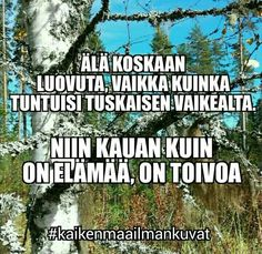 Vaikka mikä olisi Finnish Words, Stay Strong, Qoutes, Believe, Thoughts, Future, Inspiration, Ideas, Quotations