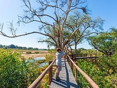 Book your walking safari or foot safari in South Africa - Dirty Boots Camp Trails, Backpacking Trails, Hiking Trips, Kruger National Park, National Parks, Wilderness Trail, Viewing Wildlife, Adventure Activities, Italy Vacation