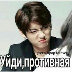 Bts Pictures, Reaction Pictures, Funny Mems, Fun Live, Bts And Exo, Bts Photo, Bts Bangtan Boy, Bts Memes, Humor
