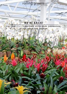 We're back! Visit out almost restored upper-level greenhouse at our Culver City location.