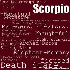 scorpio star sign - Google Search