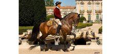 A partir de 8 de Maio, terão lugar, todas as 4ªs feiras, às 11h, apresentações da Escola Portuguesa de Arte Equestre, nos jardins do Palácio de Queluz, com a duração de 20 a 30 minutos.