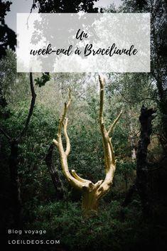 Week End Bretagne, Weekend France, Voyage Europe, Travel Inspiration, Road Trip, French, Blog, France Vacations, Elves