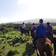 Horseback riding up to Mount Terevaka, an extinct volcano on Easter Island 🐎 || We have our flight back to Santiago today and then back to Paris on Sunday! #carasharratttravel