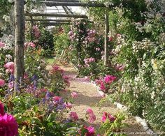 barbarasangi  - My New Crush: Perfectly Imperfect Gardens in France - Nell Hills