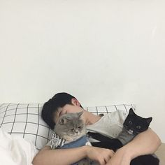 with cats