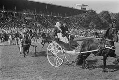 """DEN HAAG: Op de renbaan Duindigt is vandaag de """"Dag van het Paard"""" gehouden. De Koninklijk Vereniging """"Het Friesch Paardenstamboek"""" gaf een demonstratie met 8 Friese paarden voor authentieke sjezen. De deelnemers waren allen gekleed in Fries costuum. 1967 #Friesland"""