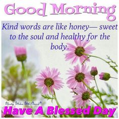 Beautiful Good Morning Quotes with Images That Will Enrich Your Day - Page 8 of 10 Good morning kind words are like honey – sweet to the soul and healthy for the body. Have a blessed day. Morning Blessings, Morning Prayers, Good Morning Good Night, Good Morning Wishes, Morning Thoughts, Good Morning Honey, Happy Morning, Night Wishes, Funny Good Morning Messages