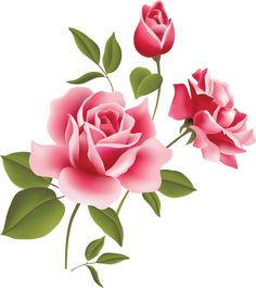 Pink Rose Art Picture Clipart