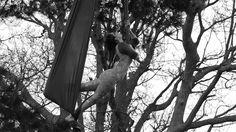 Miriam DRAGONFly Wolanski Pole & Aerial Film
