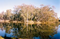 The Murrumbidgee River at Brewery Bend, Hay, South-Western NSW