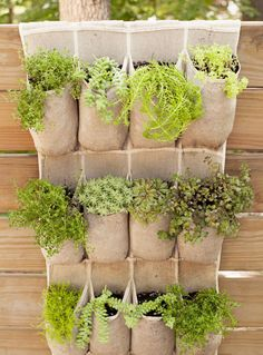 Pocket Plants – Hang an old canvas or over-the-door shoe organizer on a fence or wall, then fill the compartments with dirt and wispy ferns or vines. Click for the full tutorial and for more small garden ideas.