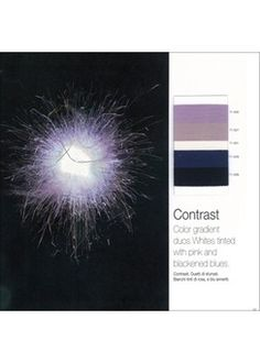 A+A CONCEPT - Color Trends F/W 15/16