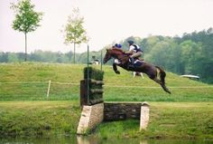 Dear future horses, if this horse can jump ditch then you have no excuse to not jump a stupid box