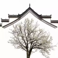 The beauty of Chinese Architecture