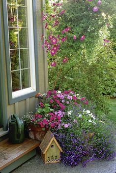 Pink, Hanging Basket, Flowers, Garden, Container Garden, Potted Plants, Window, Lobelia, Blue, Impatiens, Petunia, Birdhouses