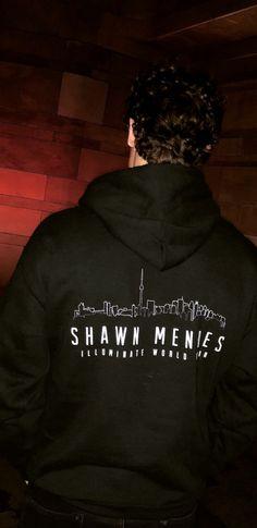 Shawn Mendes via Instagram Stories