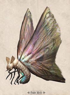 Slake Moth