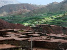 Harvest cultivation, upper mountains, Morocco.