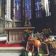 Münster anyone? 🤗  📌08.10.2017